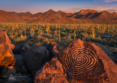 Universe's Navel (www.fourcorners.photography) Tags: petroglyph saguaronationalpark rockart saguaro cactus arizona southwest bravo sonoradesert spiral fourcornersphotography