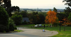 Views from the hill (alexbladen) Tags: sport speed fun photography is cool dangerous view skateboarding zoom rad perspective fast olympus downhill hills longboard skateboard omd longboarding em10 rokinon mzuiko