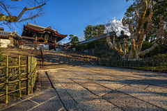 The Temple Grounds (ErikFromCanada) Tags: sunset sun tree japan stairs temple kyoto shrine soft angle path wide dramatic warmlight lateafternoon a7r