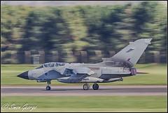 RAF Marham-3 (simon_x_george) Tags: gold star aviation military jet tornado raf panavia gr4 marham 31sqn