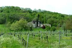 Domaine (brigeham34) Tags: france eu dordogne paysage vignes visite pigeonnier aquitaine surlaroute forts domaineviticole lefleix fz45