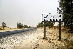 Oued Souf   (habib kaki 2) Tags: sahara algeria desert el algerie souf    oued