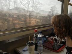 Train ride (amywallace1993) Tags: uk travel vacation rain train scotland scenery