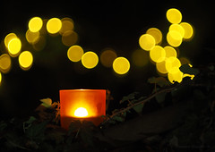 Candle bokeh_c (gnarlydog) Tags: candle bokeh bubbles nightlight romantic candlelight manualfocus adaptedlens helios447 speckledhighlights vintagelenseffect