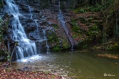 _VMG7230 (V.Maza) Tags: naturaleza landscape spain nikon galicia ros lugo waterscape airelibre sarria sendeiro d7100 asaceas rosarria