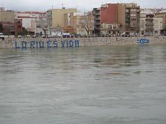 Medi ambient 1 - Jordi Sacasas