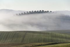 Toscana_20151225_0230 (Matteo Lanzoni) Tags: pienza toscana nebbia paesaggio podere campi