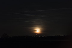 lever de lune (J.Elisa.68) Tags: sky lune alsace canon100mmf28macro nuit ried poselongue