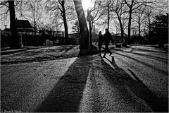 Twilight (Hindrik S) Tags: park street shadow people tree contrast garden twilight path sony pad streetphotography shade paintshoppro tuin tamron schaduw straat wintersun a57 prinsentuin paad straatfotografie tamron1750 prinsetn sonyalpha tamronspaf1750mmf28xrdiiildasphericalif tn sonyphotographing skaad strjitte slta57 57