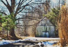 Along the way (shannon4462) Tags: winter snow tree barn rural landscape outdoors woods shadows country maryland structure framing bushes pathway edits calvertcounty alongtheway flickrfilter owingsmd sonydscrx100 brooklynfilter