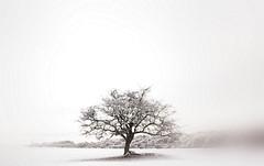 "I am a individual ! (CJS*64 ""Man with a camera"") Tags: winter snow cold manchester nikon bleak nikkor salford corel cjs nikkorlens swinton 35mmlens nikond7000 35mm18lens craigsunter cjs64 prox8"
