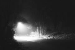 lights (holgerzill) Tags: street white black film monochrome tarmac lights noir darkness dream surreal
