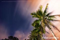 Pedro de Toledo (Stefan Lambauer) Tags: brazil sky nature field brasil night stars br interior sopaulo estrelas cu campo tracking longaexposio coqueiros 2016 longexposition pedrodetoledo stefanlambauer