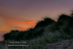 Yellowcraig Dunes (Shuggie!!) Tags: beach sunrise landscape dawn scotland williams dunes silhouettes karl grasses lothians hdr yellowcraig zenfolio karlwilliams