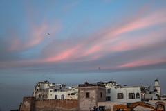 Essaouira (io.robin) Tags: marocco essaouira