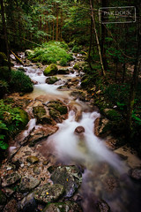 Nakasendo trail (@PAkDocK / www.pakdock.com) Tags: wood travel viaje trees alps nature water leaves japan creek forest river landscape waterfall stream long exposure angle outdoor sony voigtlander wide hike route valley serene organic japon 15mm magome heliar nakasendo tsumago honshu kiso twitter a6000 pakdock sonya6000 kisokaidō facepak
