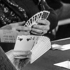 """Une passion  """"le bridge"""" (beatricedrevon) Tags: bw cartes jeux jeudecartesbridge"""