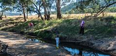 Morning walk with Nana and daddy (dicktay2000) Tags: family au australia newsouthwales murringo richardtaylor 20160202p2020311hdr merringogap