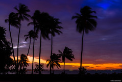 Cool Sunset Breeze (ManchegoP.R) Tags: blue sunset clouds lights colours puertorico sunray