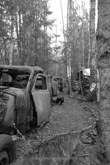 20160203089806 (koppomcolors) Tags: classic cars car vintage sweden bil sverige veteran värmland gammal bilar varmland båstnäs koppomcolors