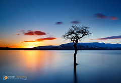 The Tree (StuG123) Tags: lochlomond tree sunset mountains snow milarrochybay littlestopper leefilter