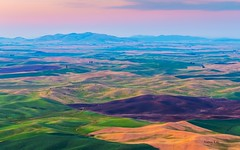 Palouse from Steptoe Butte (Nancy Rose) Tags: sunset evening colorful farmland crops fertile 36093 forestfirehaze palousefromsteptoebutterollinghills