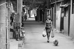 Hutong  Beijing (Julien Mailler) Tags: world china street travel people blackandwhite dog asian julien alley asia chinese beijing laundry asie hutong chinois chine nationalgeographic asiatique pkin reflectionsoflife lovelyphotos jules1405 unseenasia earthasia mailler