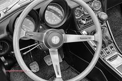 Trieste Opicina Historic 2016 (Pachibro Portfolio) Tags: auto car canon eos 7d trieste vintagecars opicina friuliveneziagiulia autostoriche canoneos7d shotsts clubdeiventiallora scattifotografici pasqualinobrodella pachibroportfolio pachibro