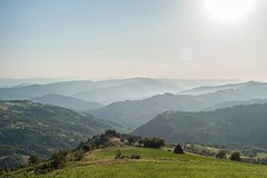 Rolling Hills (shot37) Tags: travel nature beautiful misty landscape photography awesome serbia relaxing hills majestic priroda srbija brdo brda sumadija planina planine pejzaz instatravel igserbia prirodasrbije