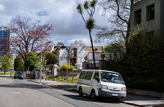 Another One Hits the Dust (Jocey K) Tags: street trees newzealand christchurch clouds buildings demolition van cabbagetree