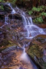 Leura Cascades 1 (Ian Moore Photo) Tags: mountains waterfall nikon cascade d800 leura