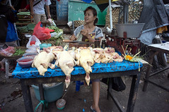 (kuuan) Tags: bali chicken market mf manualfocus 15mm voigtlnder heliar superwideheliar aspherical singaraja f4515mm voigtlnderquot