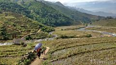 Moist Stroll (the_edventurer) Tags: vietnam hanoi sapa hmong
