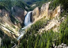 Lower Falls (bob hindley) Tags: water waterfalls yellowstonepark