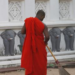 Sweeping monk (driek) Tags: orange elephant temple monk srilanka sweeping