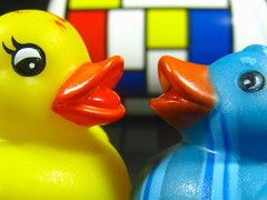 yes, i absolutely think we were an inspiration for mondrian's paintings ~grin~ (muffett68 ) Tags: two theme duckies primarycolors pietmondrian mondrain macromonday