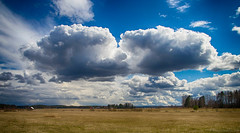 April landscape (Joni Mansikka) Tags: trees sky nature clouds suomi finland landscape spring outdoor blues ground pale fields urjala