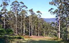 Lot 2, Cedar Springs Road, Kangaroo Valley NSW
