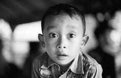 26520024 -  () Tags: bw bali film minolta     indonisia  banyuwangi  minoltaxe rokkor50mmf14