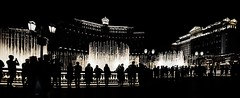 Bellagio Fountain's Silhouettes (Steve Siri) Tags: show vegas art photography photo yahoo google artist photographer artistic lasvegas postcard nevada picture photographed bing siri d800 relevant 1424mm siriimages siriimage stevesiri siriphoto bellagiofountainssilhouettes