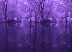 IMG_20150626_110028 (zkj102) Tags: city tree rain ir 3d cityscape shanghai stereo infrared htconex