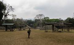 "Copan Ruinas: la Plaza Principal et ses stèles <a style=""margin-left:10px; font-size:0.8em;"" href=""http://www.flickr.com/photos/127723101@N04/26523464966/"" target=""_blank"">@flickr</a>"