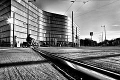 crossing the rails (d26b73) Tags: blackandwhite bw monochrome noiretblanc explore streetphoto x70 explored urbanarte