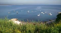 latakia (nesreensahi) Tags: sea beach nature landscape syria سوريا latakia اللاذقية سورية