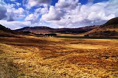 Along General Wade's Road. (Fr Paul Hackett) Tags: wild mountain sunshine wade moorland