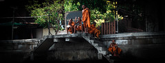 (ny_iam) Tags: street travel people thailand boat asia market bangkok buddha east monks robes nyiam