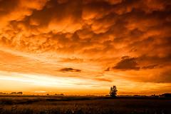 Gewitterwolken (wolfgangweidig) Tags: germany de deutschland europa gewitter deu wetter schleswigholstein umwelt theworld diewelt dithmarschen krempel witterung gewitterwolken naturlandschaft
