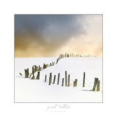 quiet letter (une lettre sans mot) (patrice ouellet) Tags: winter rural landscape hiver patricephotographiste quietletter unelettresansmot