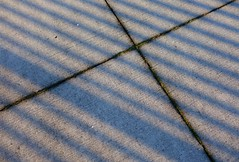 Shadow lines (Librarianguish) Tags: winter water lines afternoon shadows sunny 116 mild xmarksthespot oakharbor sidewalkcracks