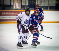 Ashley (some interference) It's a goal (13skies) Tags: game ice hockey sport lights sticks play ashley arena goals cheers puck score kitchenerladyrangers